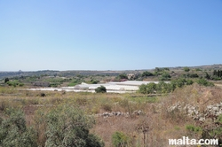 Fields and greenhouses near Bidnija and Mosta Dome in the background