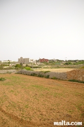 Fields and cultures around Dingli