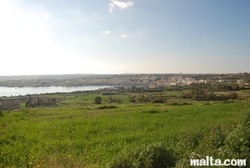 Fields and Marsaxlokk in the distance