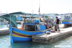 Fishermen coming back to the harbour in Marsaxlokk
