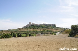 Fields and the Mdina's fortress