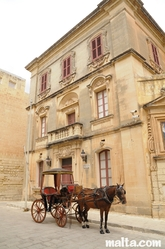 Horse Coach in front of an old building in Mdina