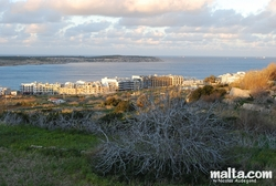 Mellieha bay Hotels