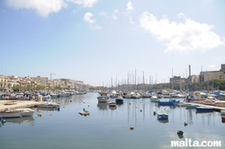 Boats and building surrounding the Msida Marina