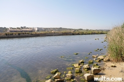 part of the salines of qawra