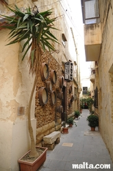 Rabat's narrow street