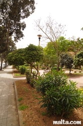 St Dominic Garden of Rabat