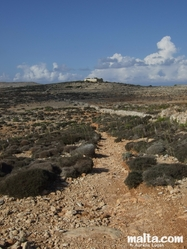 Small trekking path in Comino