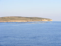 Fish farm near Comino