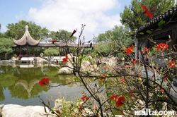 Flowers and the lake of the Garden of Serenity in Santa Lucija