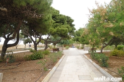 path  in hastings garden valletta