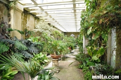 greenhouse corridor of the palazzo parisio garden