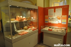 potteries at the National Museum of Archaeology